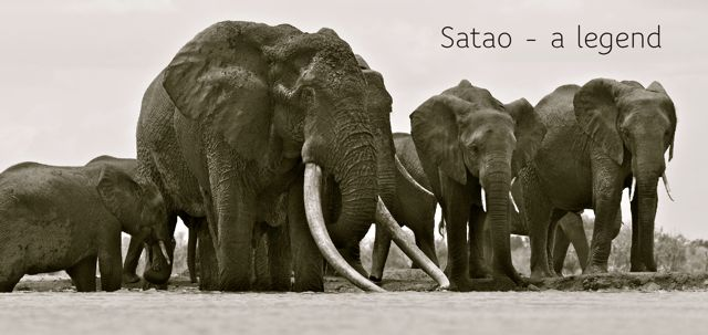 Satao - legend just title
